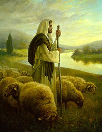 ISRAEL, OVELHAS, APRISCO, CURRAL, REDIL, ESTUDO BÍBLICO, TEOLOGICO